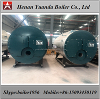 Food industry Natural gas propane fired steam boiler