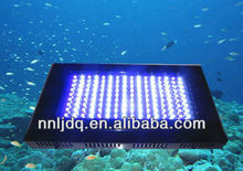120W fresh water fishes tank lighting White Blue coral reef led lighting 20000k