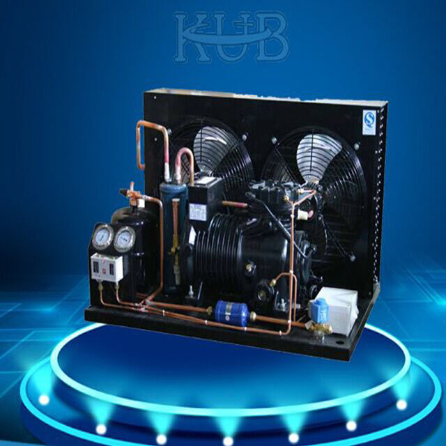 BFS31 semi-hermetic freezer compressor air cooler condensing unit