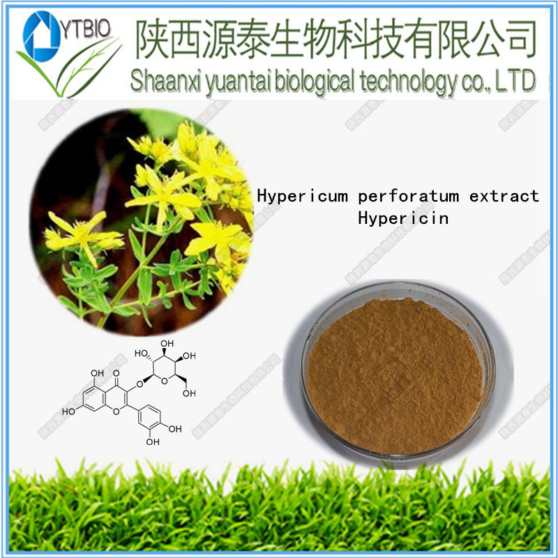 100% natural Free sample for herbal medicine for depression St. John's Wort Extract 0.3% Hypericin powder 98%