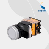 Saip/Saipwell China Supplier High Quality Hot Sale 24V 22mm Mini Waterproof Push Button Switch