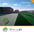 FIFA field used Artificial Grass SHOCKPAD 10mm-30mm
