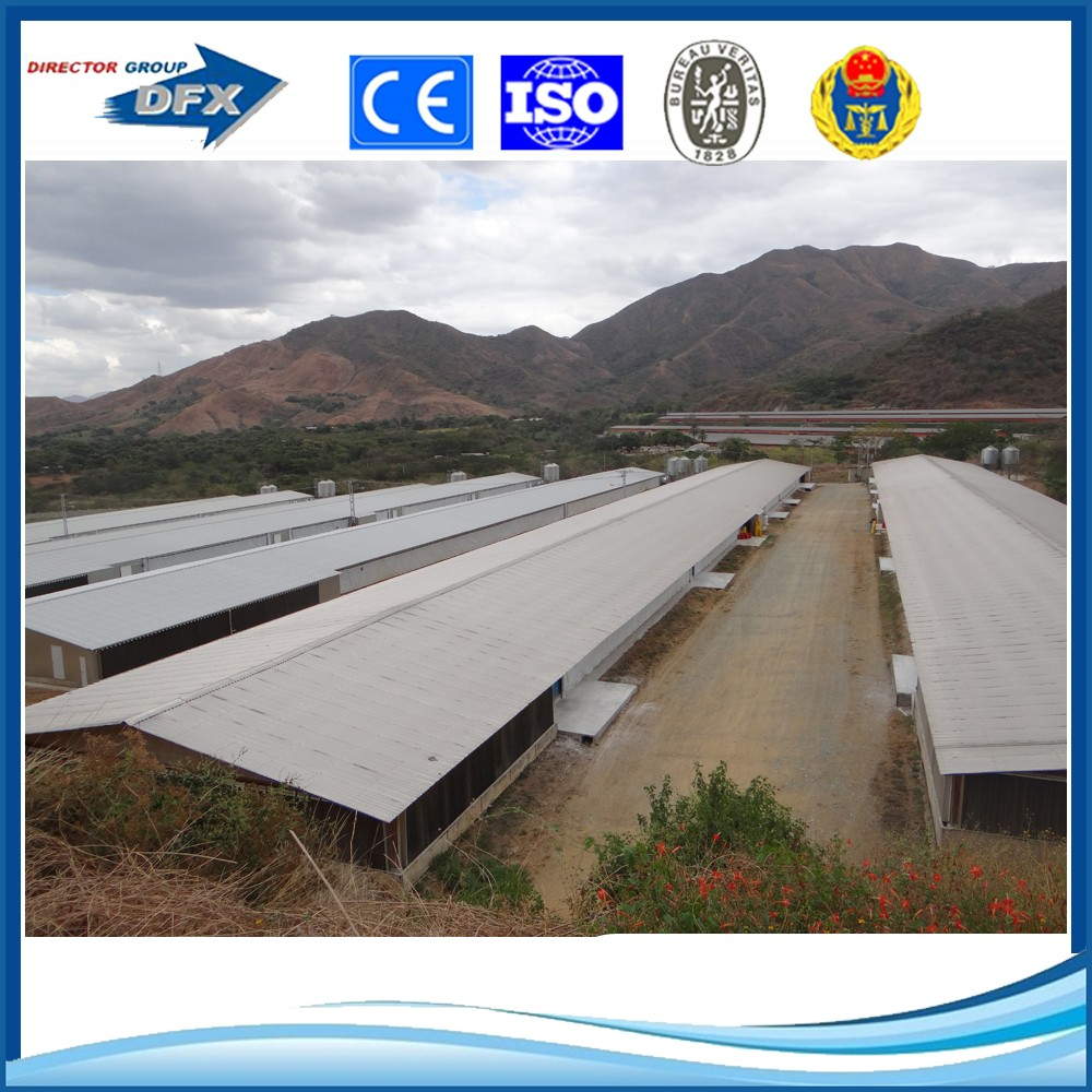 Light Steel Structure Farm Broiler Poultry House Shed