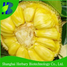 Hot sale Jackfruit seeds for growing