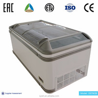 Commercial cooler for frozen food with two sliding glass door freezer
