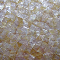 Crack yellow lip mop mother of pearl random chip seashell mosaic wall tile TV backing wall main lobby wall