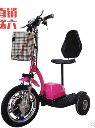 Mag 2016 500W Three Wheel Hot selling !!!Hot sale tree-wheeler electric bicycle 2 seat mobility scooter three wheel auto ricksha
