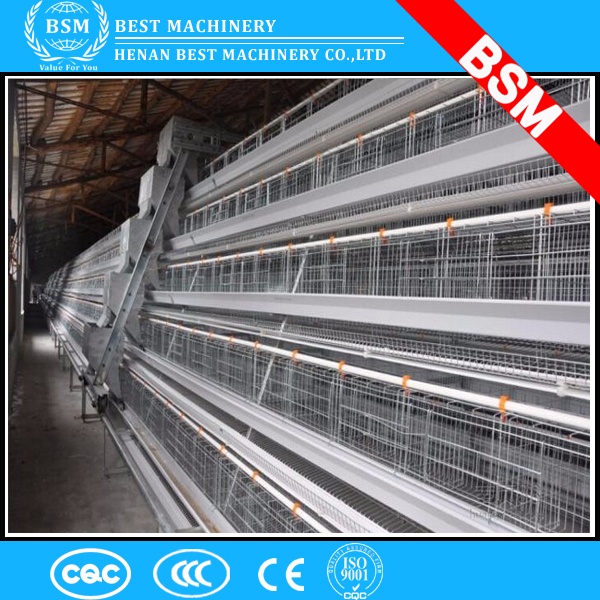 BSM hot supply hens chicken cage/chicken layer cage/chicken farm poultry farm