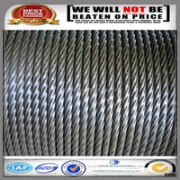 Electric galvanized /hot-dipped galvanized steel wire rope for crane
