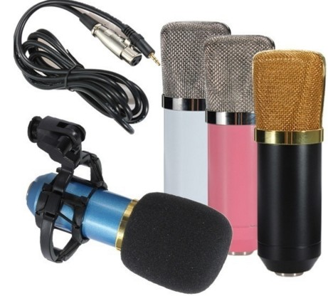 Condenser Microphone Professional Studio Microphone BM-700 for Computer Recording Karaoke Singing Skype MSN Chat