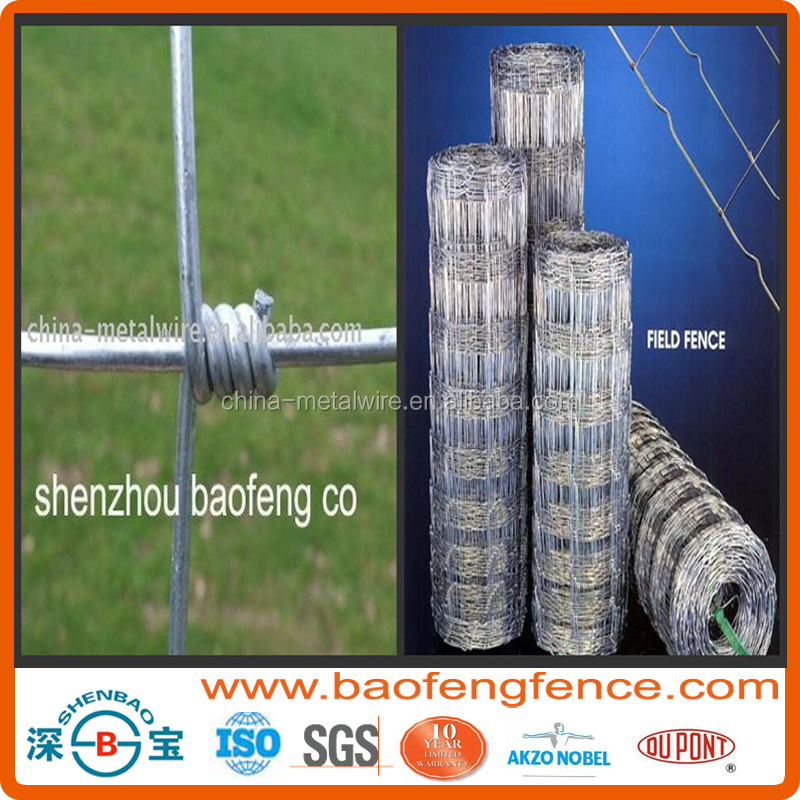 Hot Dipped Galvanized High Tensile Steel Hinged Joint Wire Field Fence For Farm,Forest ,Wild Dog,Road Safety ( Factory Exporter)