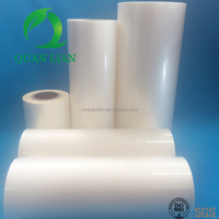 China professional manufacturer customized thickness transparent plastic film with glue