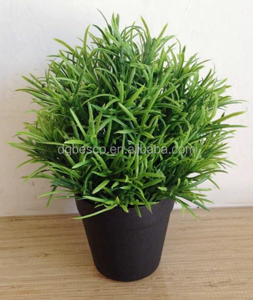 Home/Garden Decorative With Latest Products Cheap Malt Grass