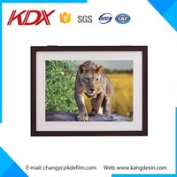 Custom 3D Animation Picture 3D Photo/Image With PET/APET Film Acrylic Resin