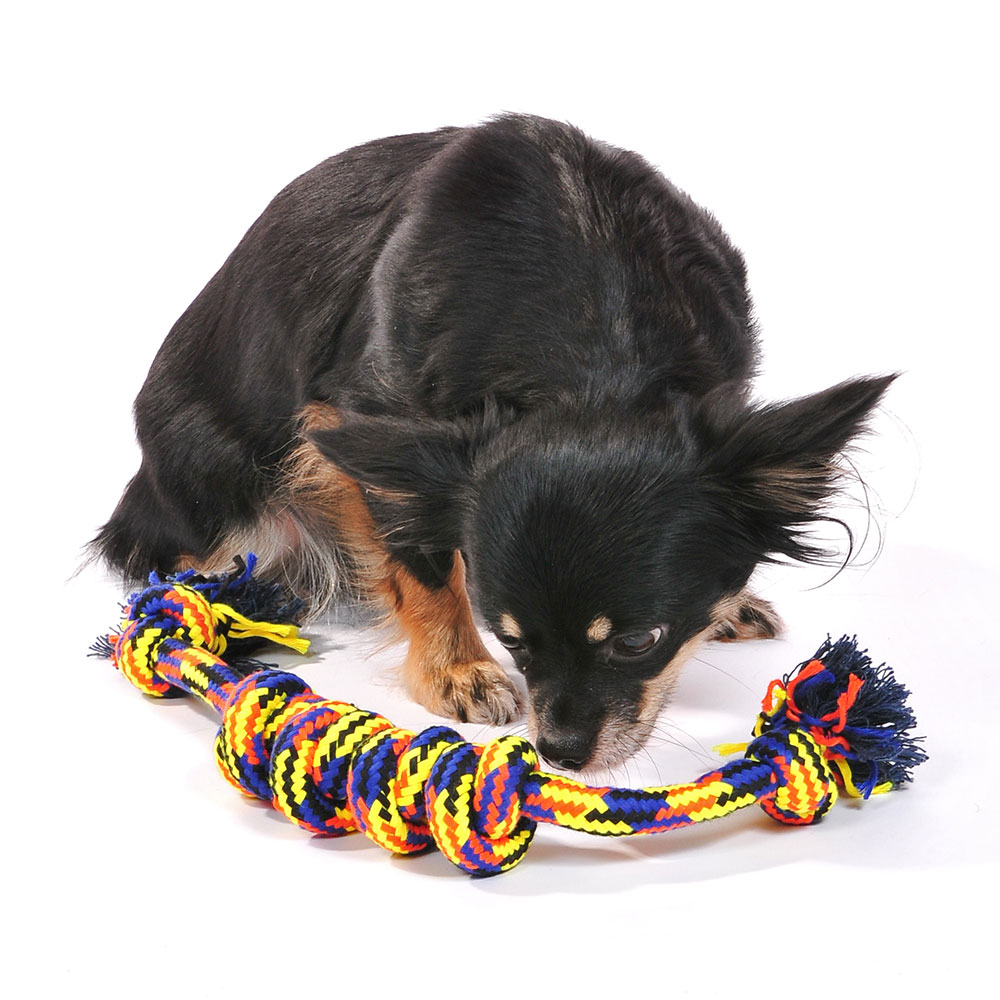 New style hot selling dog rope toy