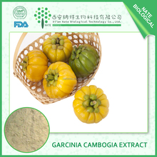 Natural Loss Weight New Products Garcinia Cambogia Extract 75% For Capsules Hydroxycitric acid