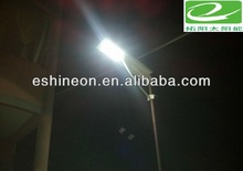solar lights for garden,light solar garden,garden oasis solar lights