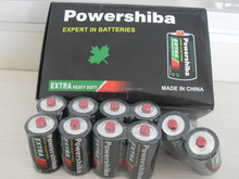 SUNWATT brand R20 battery