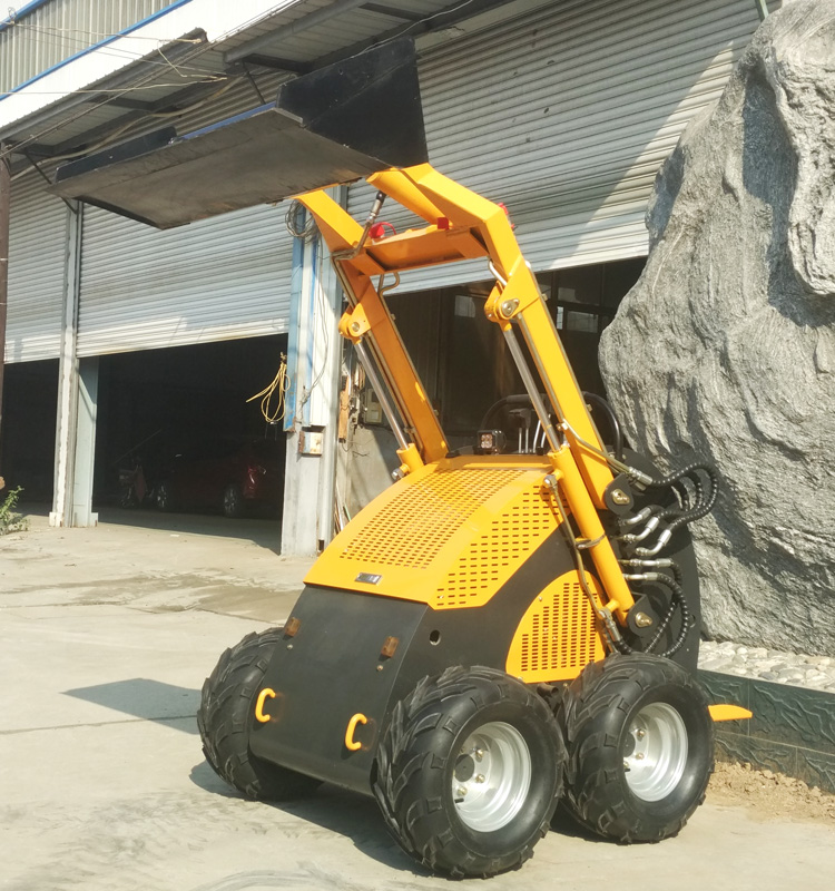 skid steer loader001.jpg