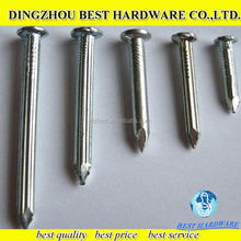high quality Hot dipped Galvanized stainless steel concrete nail/large steel nails