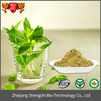 Organic herbal Extract fresh mint leaves Extract,mint flavor powder