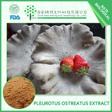 Natural bodybuilding supplements Oyster Mushroom Extract and Pleurotus ostreatus 30% Polysaccharides
