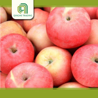 Hot selling fruit -fresh fuji apples with CE certificate