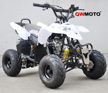 110cc Mini Polaris ATV QUAD for sale CE