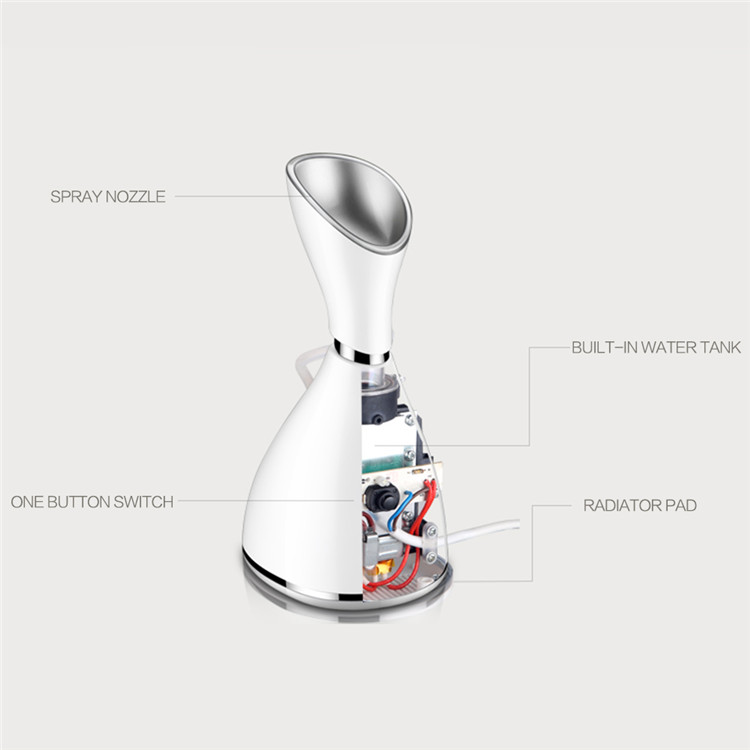 Multifunction Beauty Machine Home Use Nano Ion Skin Relieve Facial Steamer