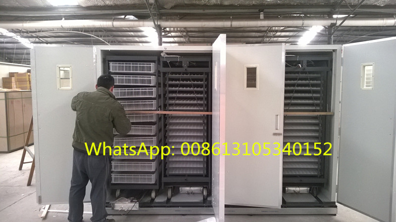 Newest design Full Automatic chicken egg incubator , incubator and hatcher for egg , incubateur ZH-22528