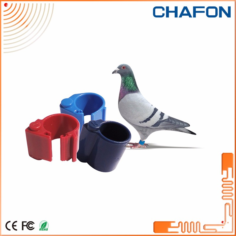 pigeon race games 125khz frequency tk4100 pigeon foot ring