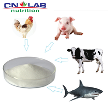 Pure natural Shark For Cartilage/Glucosamine Chondroitin/Chondroitin Sulfate