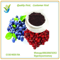 High quality European Bilberry Extract, plant extract