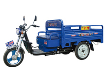 cargo tricycle for handicap