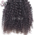 Double Drawn Kinky Curly Malaysian Virgin Human Hair Wigs With Cuticle Aligned