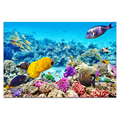1 Piece HD Printed Undersea World Paradise of Fish Canvas Art Colorful Fish and Coral Wall Picture for Living Room Bedroom