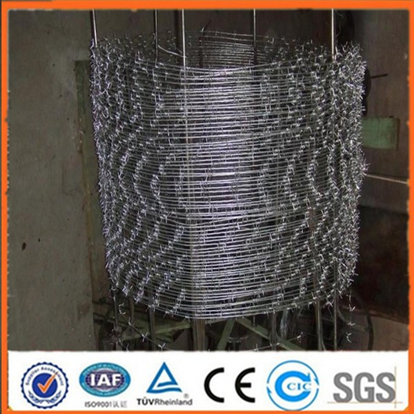 AP golden factory supplies Factory Barbed Wire Price barbed wire length per roll for sales