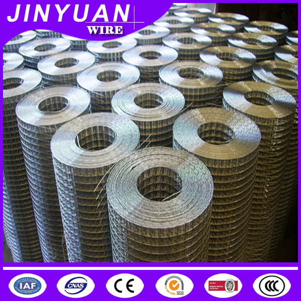 hot sale galvanized or PVC coated 1/2*1 inch square hole 0.3M-2M high good quality welded wire mesh hot sale
