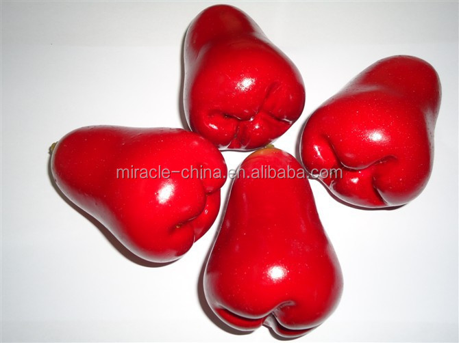 plastic artificial fruits for decoration