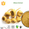 Free sample providable! China facotry price macamides macaenes extracted maca powder