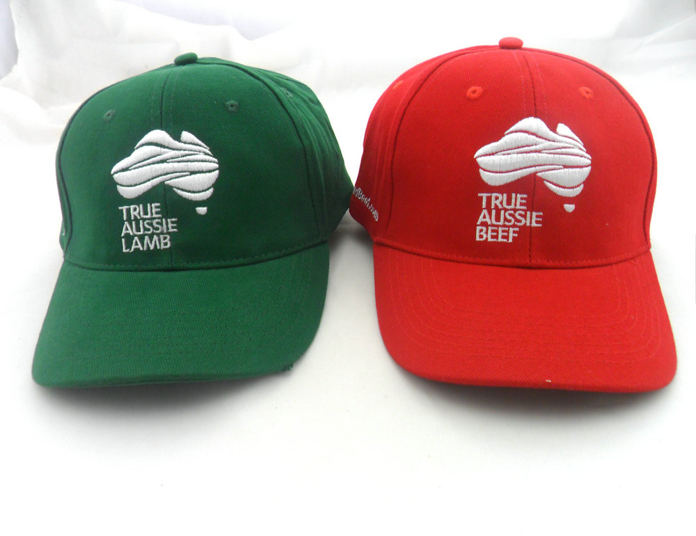 outdoor custom brush cotton embroidery sports hat wholesale china