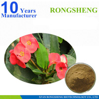 hot sale Natural Crown of Thorns Extract Powder
