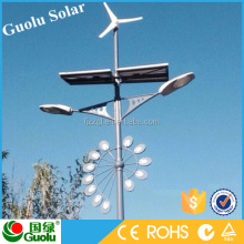 Single Arm and Double Arm Hot-Dip Galvanized Pole, 30W-120W/6M-12M Street Lighting Fitting