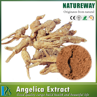 Natural herbal medicine angelica dahurica extract powder