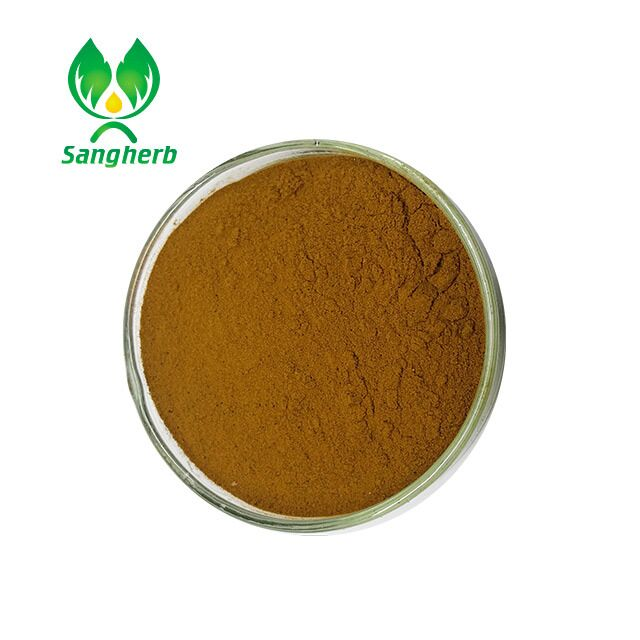 2017 New Ivy leaf extract / Hederacoside/hederagenin from China famous supplier