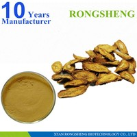 High Quality natural Burdock Root Extract powder