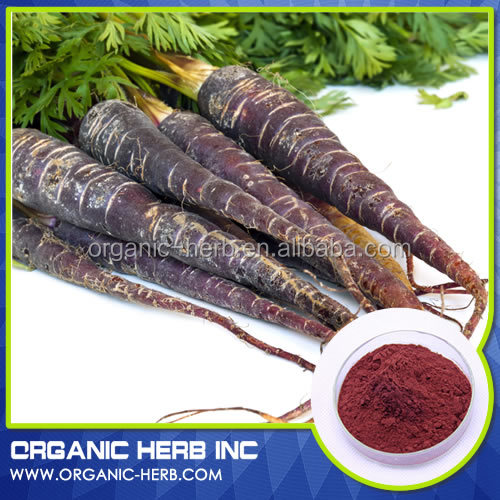 Black carrot Radish Anthocyanin Extract powder from manufactures