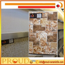 Decorative Cheap Floor and Ceramic Wall Tile 250*400MM