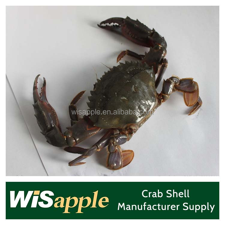 water soluble Crab Shell Chitosan