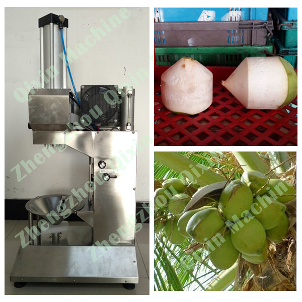 automatic coconut peeling machine / coconut trimming machine